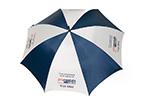 1269260685webblueumbrella
